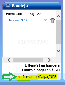 nuevo_rus_proc06