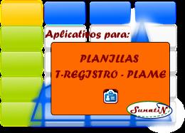tregistro-plame-planillas-macros-sunat-in