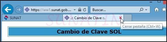 SOL-Cambiar-Clave-08