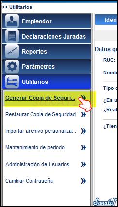 PLAME-Copia-Seguridad-Backup-04