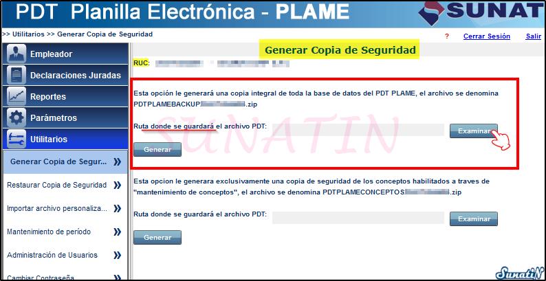 PLAME-Copia-Seguridad-Backup-05