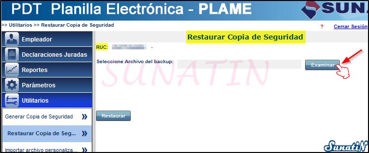 PLAME-Copia-Seguridad-Backup-Restaurar-04