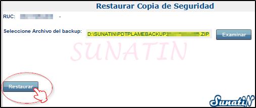 PLAME-Copia-Seguridad-Backup-Restaurar-06