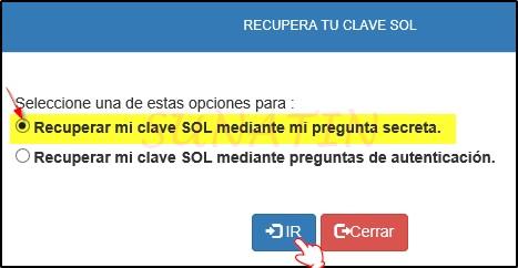 Recuperar-Clave-SOL-Pregunta-Segura-01